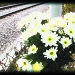 waam(rail2) copy